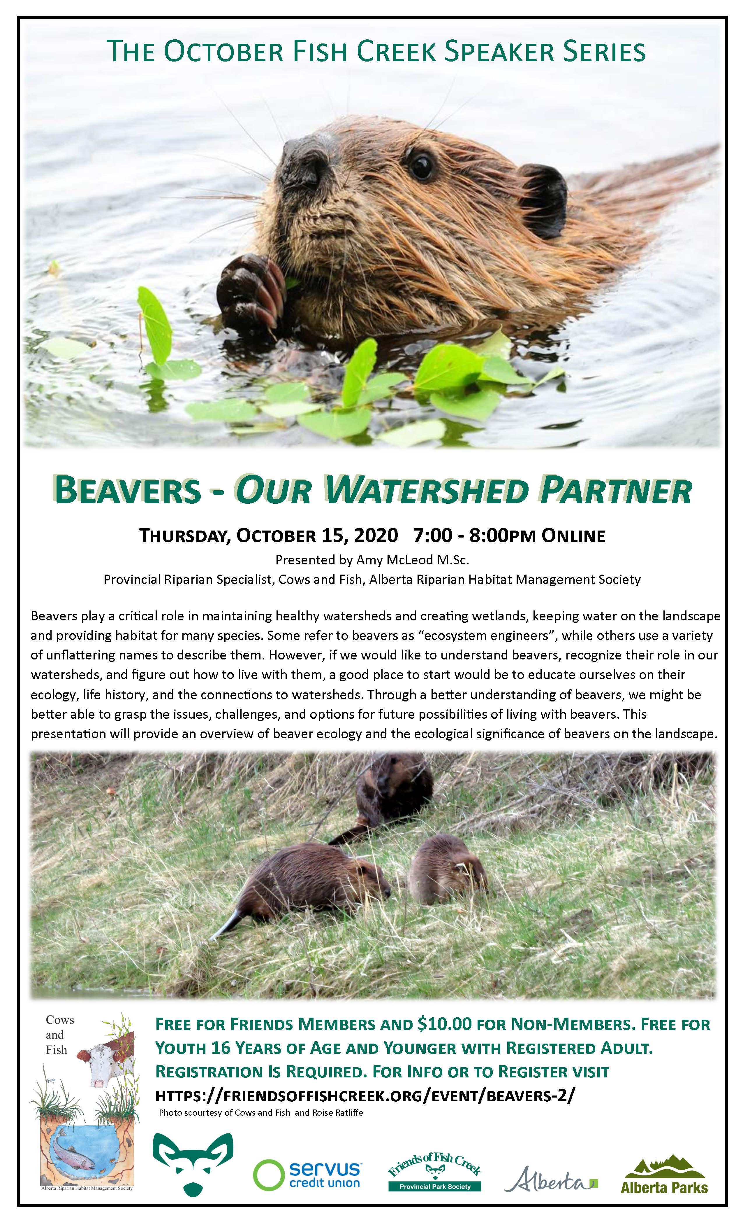 Beaver - Our Watershed Partner Webinar