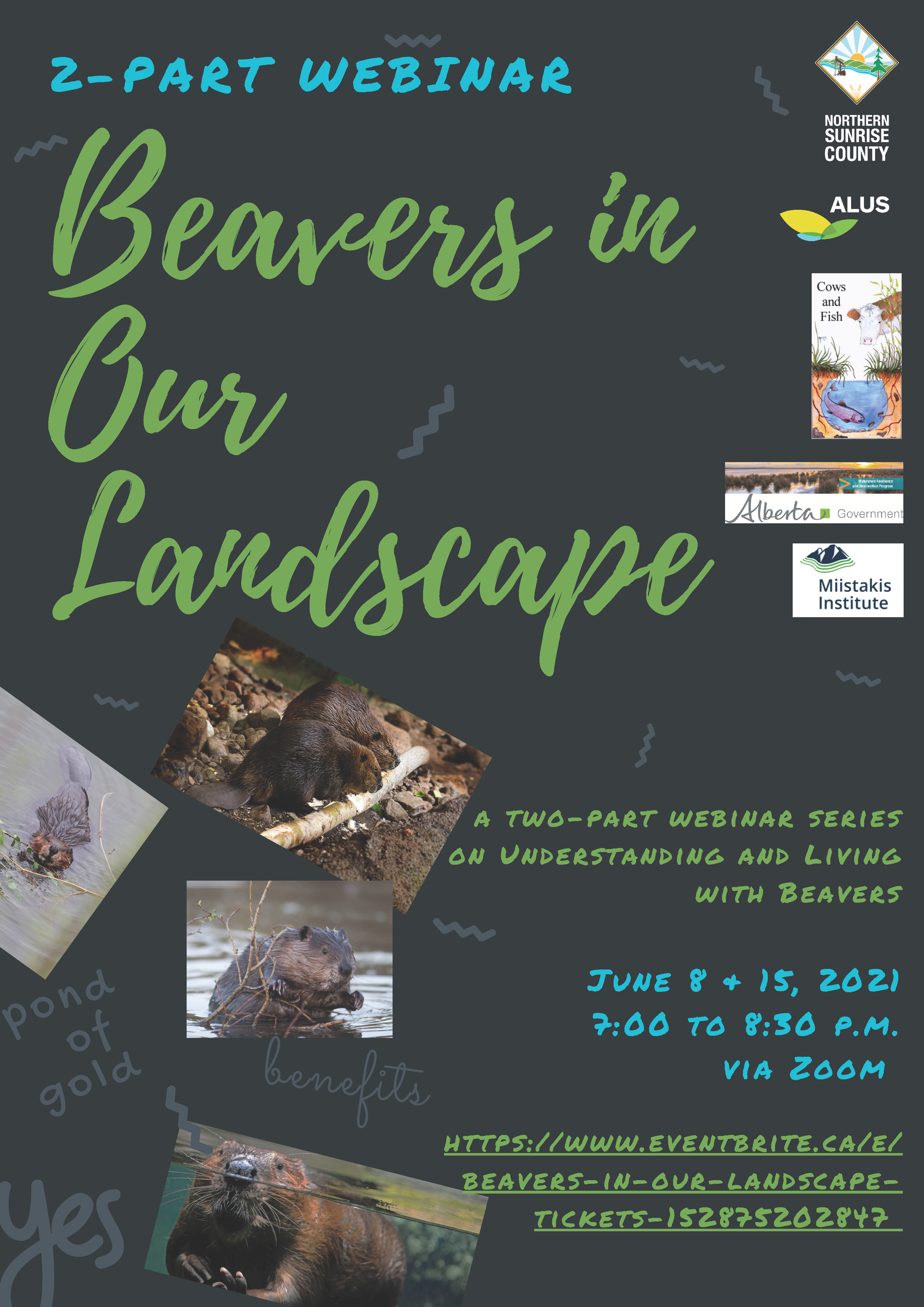 Beavers in Our Landscape Webinar - Understanding and Living with Beaver