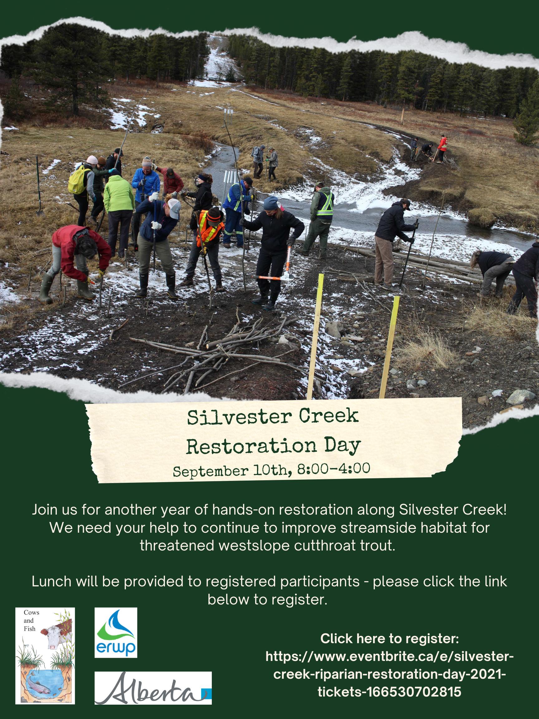Silvester Creek Riparian Restoration Day