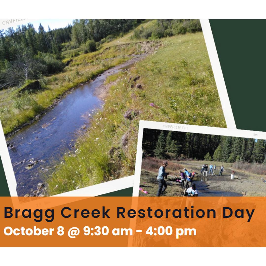 Bragg Creek Restoration Day