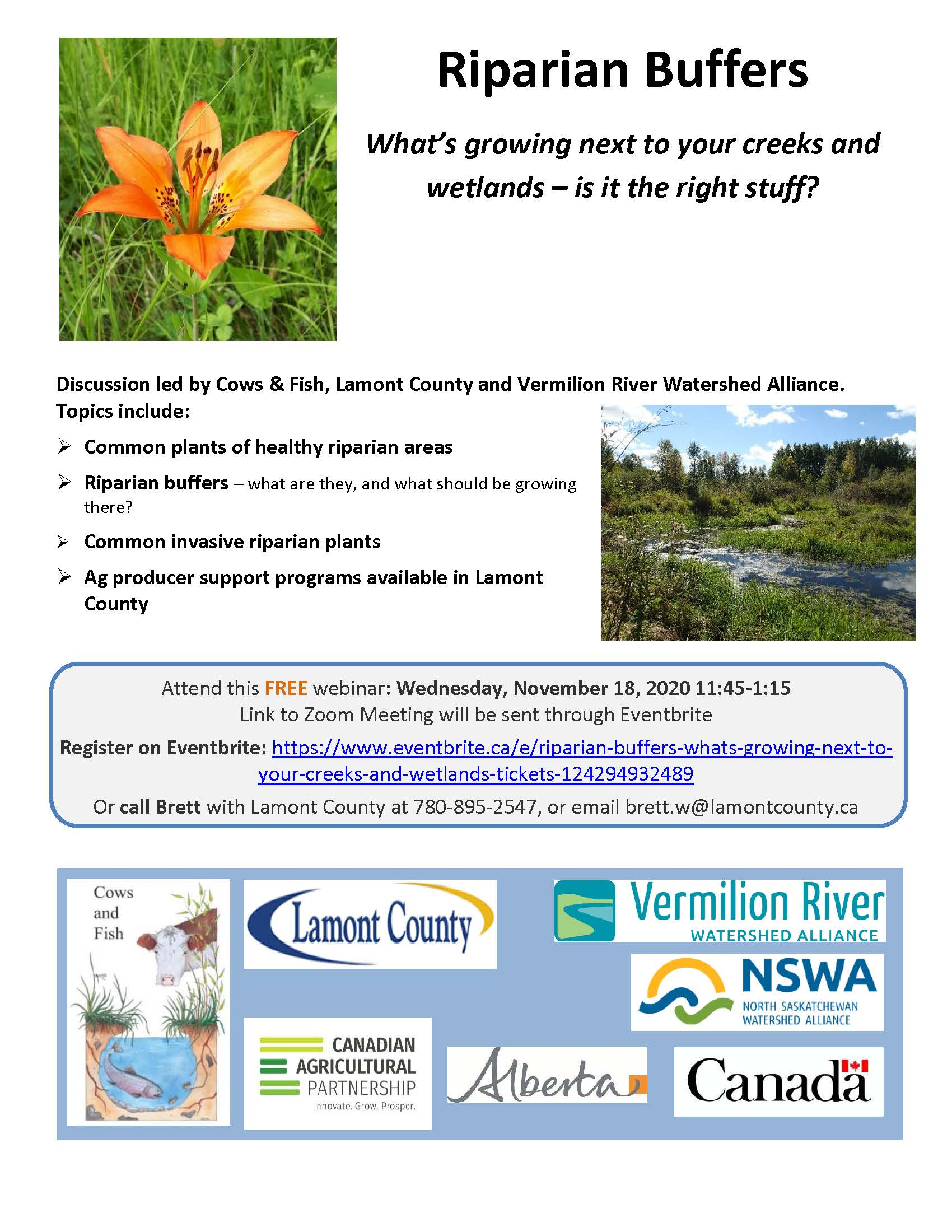 Riparian Buffers - What's growing next to your creeks and wetlands?
