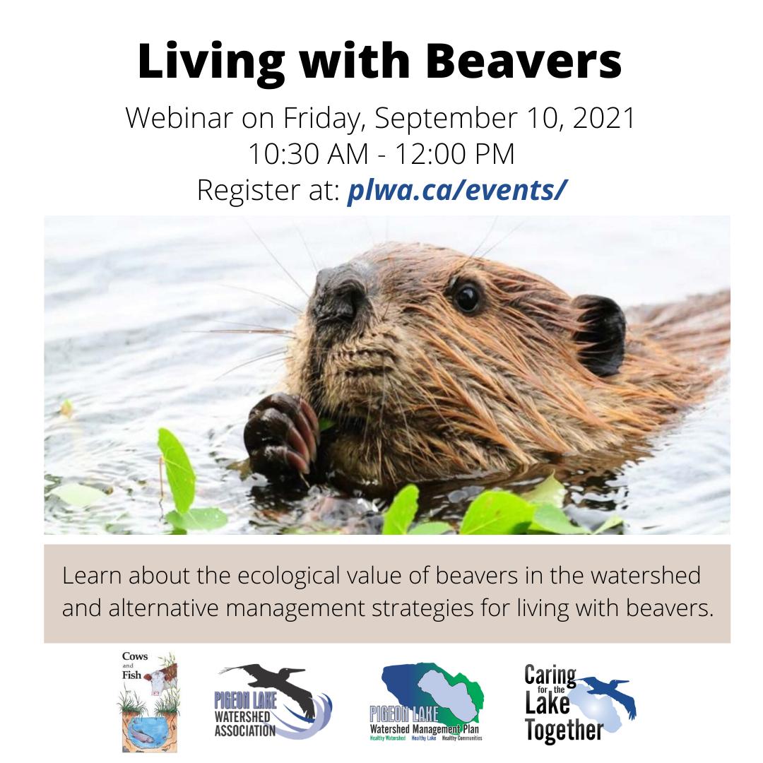 Living with Beavers - Healthy Lake Speaker Series