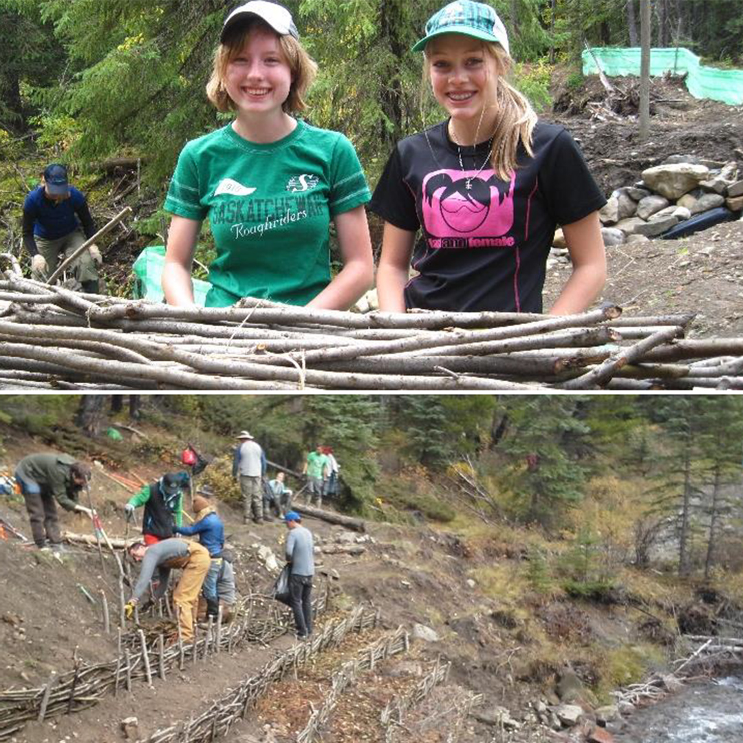 Trail Crew Bioengineering Basics - 'Lunch and Learn' Webinar