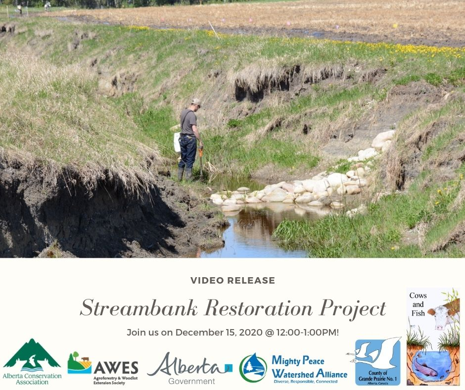 Streambank Restoration Video Release