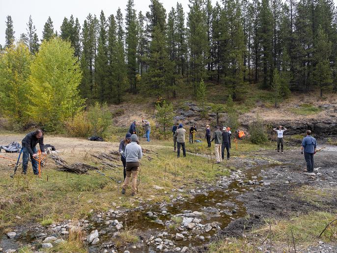 Upper Fish Creek Restoration Day