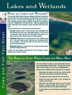 lakes_wetlands