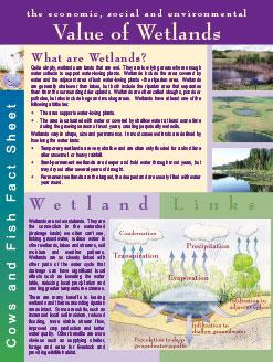 value_of_wetlands
